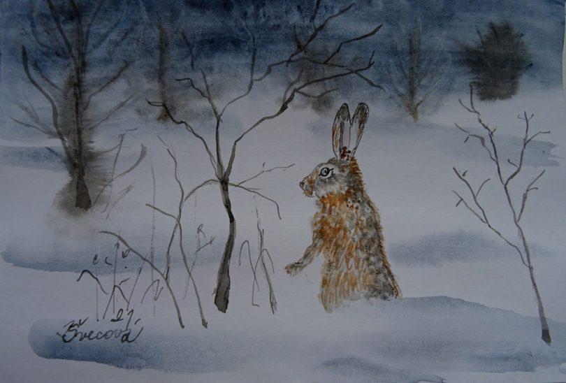 Zajíc panáčkuje v zasněžené krajině.