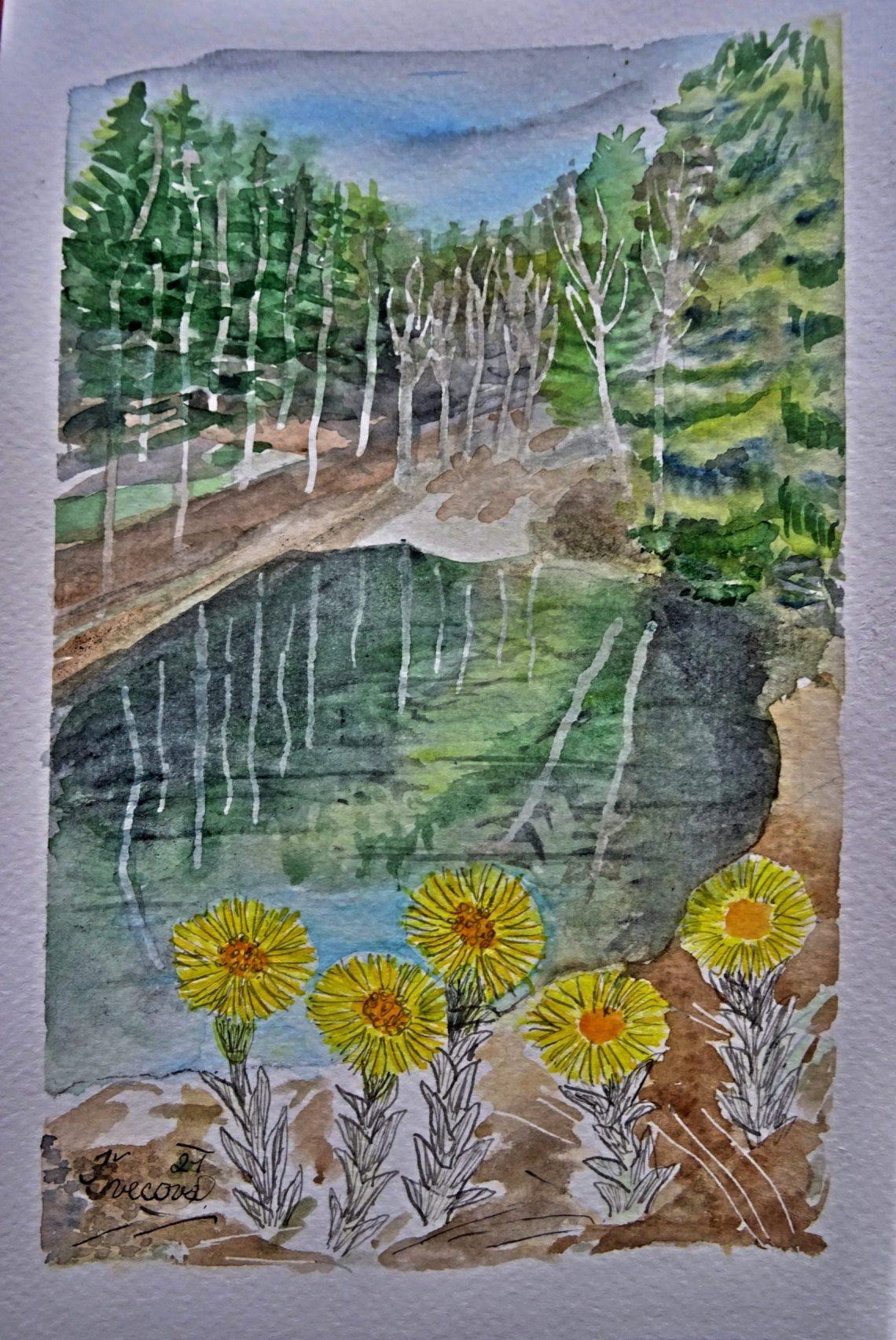 Na hrázi rybníka v lese kvete podběl
